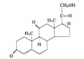 Category of steroid hormones
